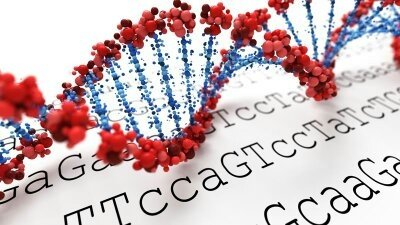 DNA SEQUENCE DATABASES PDF DOWNLOAD