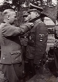 How did the various Waffen SS volunteers from outside of Germany