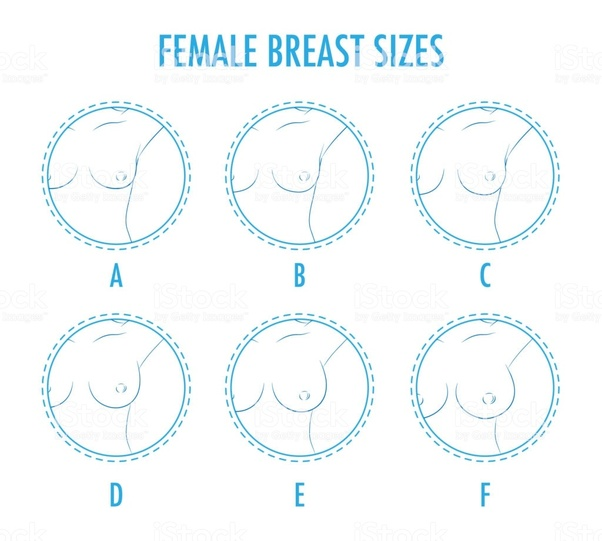 with pictures size Breast
