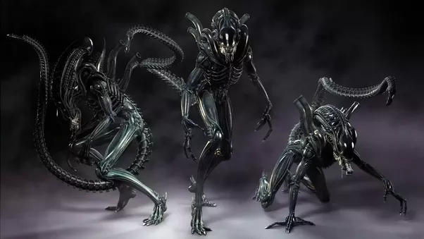 Xenomorph Vs Zerg Who would win, ...