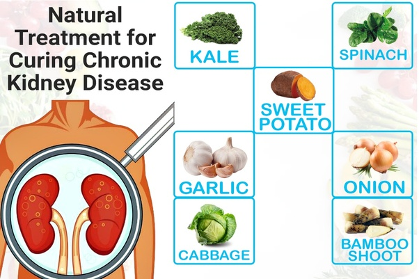 What is the natural treatment for curing chronic kidney disease? - Quora