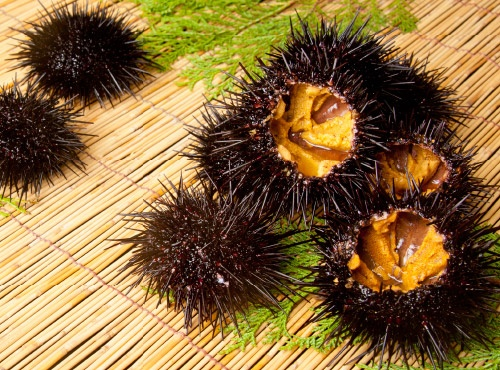 What Is The Japanese Food Uni Sea Urchin Quora