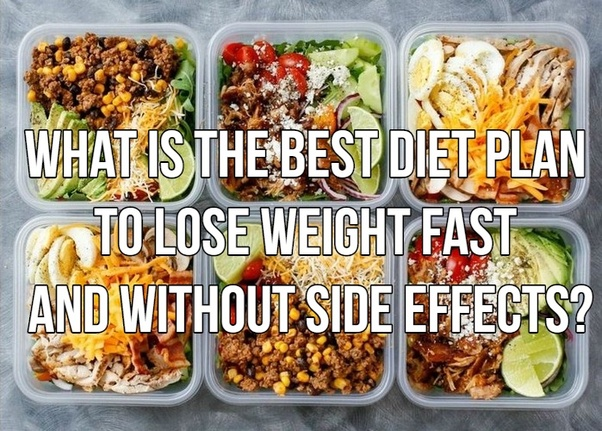 best diet plans to lose weight