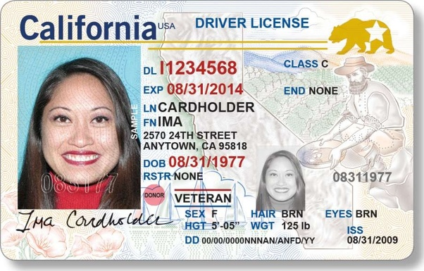 lost pa drivers license what to do