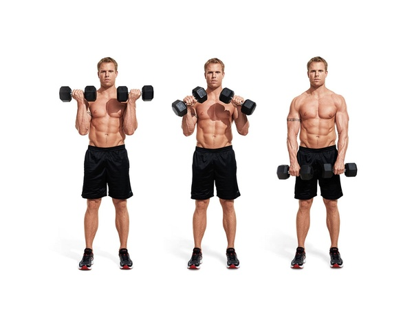 Which Dumbbell Exercises For Arms Should I Do Quora