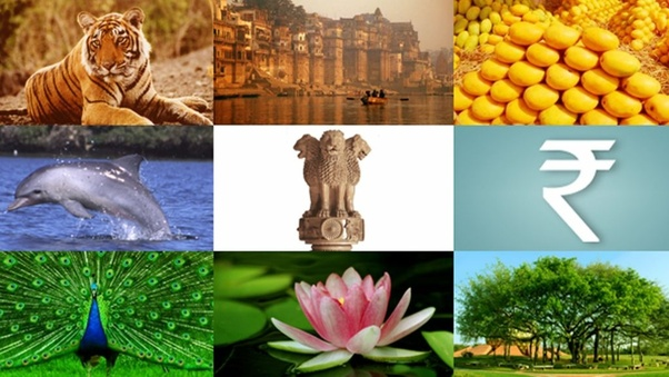 Do you know some Indian States and their Symbols? - Quora