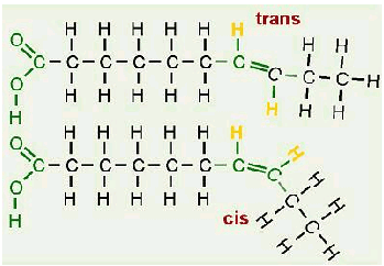 What Is The Difference Between A Cis And A Trans Form In