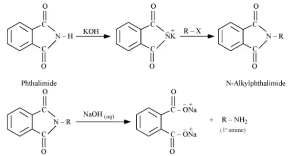 synthesis of phthalimide from phthalic anhydride and urea pdf