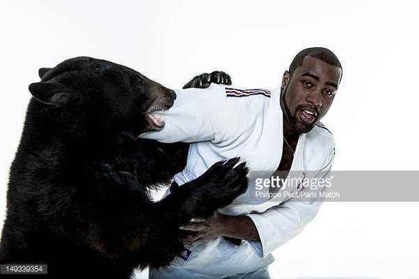 Can the strongest known human fight a gorilla and win? - Quora