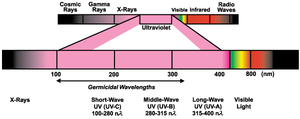 Ultraviolet Is Light That Has A Wavelength Just Too Short For You To See    Just Beyond Violet, While Infrared Has One Just Too Long.