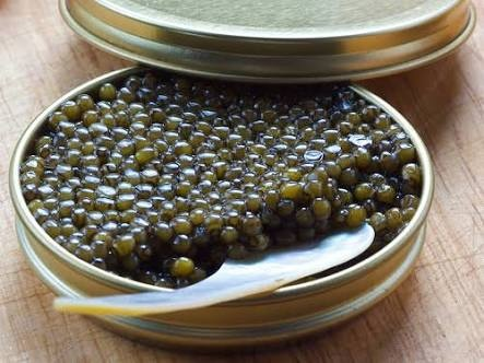 Can we do caviar cultivation in India? - Quora