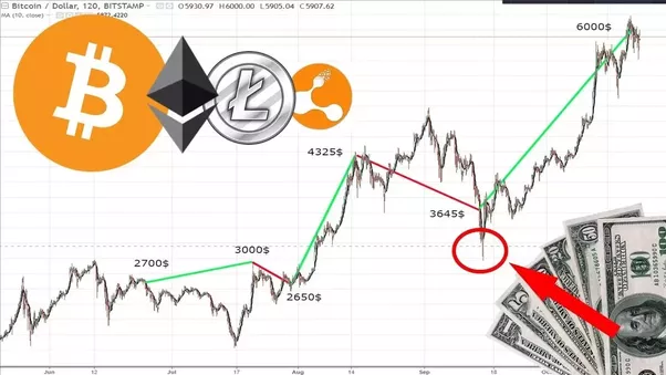 buy Coinbase With Paypal Bitcoin Motley Fool – Bella