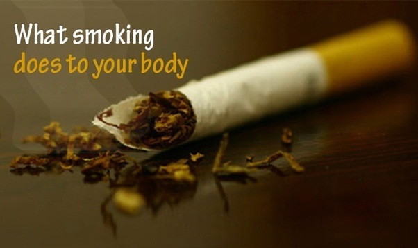 What are the effects of smoking on the body? - Quora