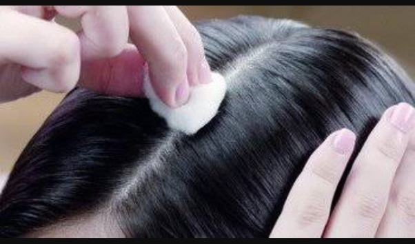 Image result for castor oil apply with cotton on hair