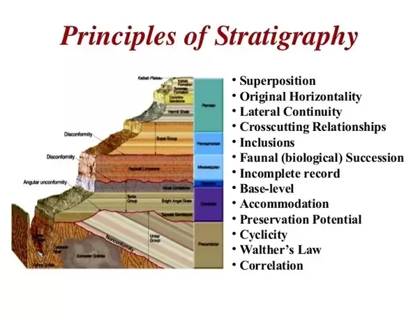 stratigraphy and radio carbon dating definition