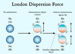 Is the van der Waals force a polar interaction or a non
