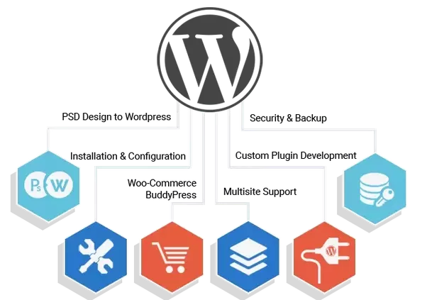 Is there any WordPress theme developer? - Quora