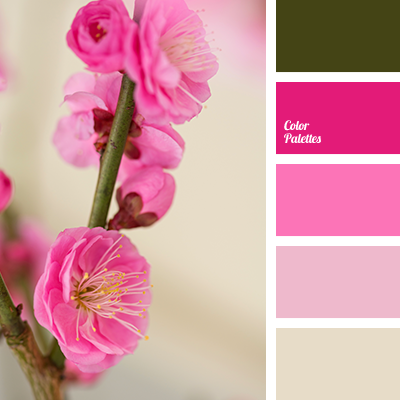What Colour Goes Best With Fuchsia Pink Quora