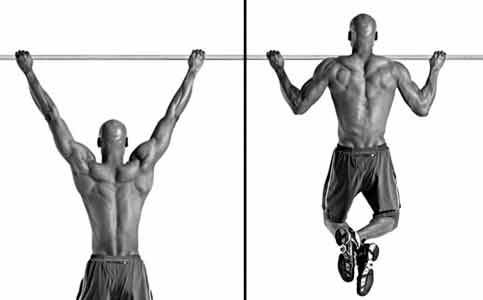 exercise if i do chin ups and pulls ups everyday for a year will i