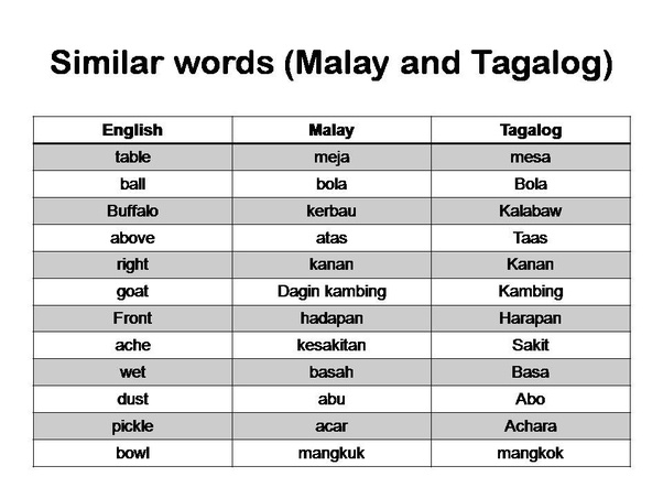 What are some words which are the same in Bahasa Indonesia