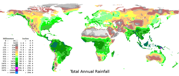 Why doesnt the equatorial rainforest region stretch to the east as you can notice dark green is more rainfall and is present almost in entire equatorial africa except eastern parts ie in kenya surrounding parts gumiabroncs Choice Image