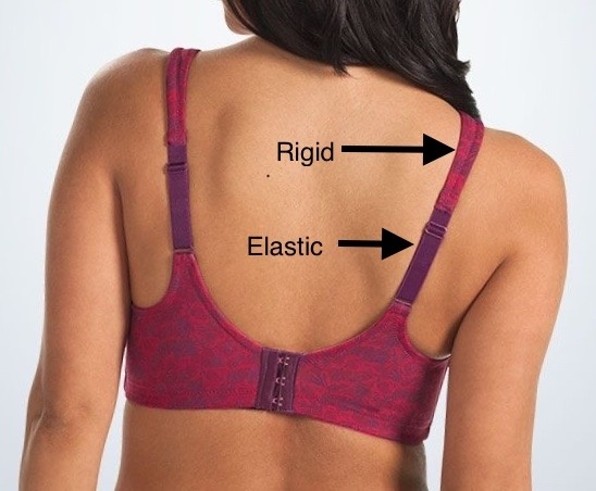 f31fd4d29 This is especially true for bras where the straps are not entirely made of  elastic material such as a strap that has a short piece of elastic only in  the ...