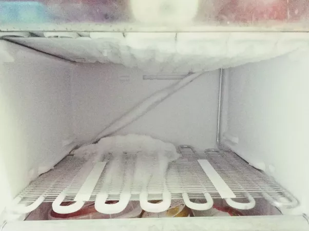 What Are The Consequences Of Leaving A Left Freezer Door