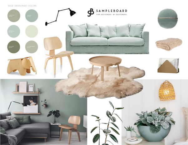 There Are Quite A Few Shades Of Sage Green But This Will Give You The General Picture It Can Be On Warmer Side Too For More Inspo Check