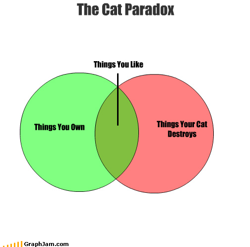 what are some funny paradoxes that changed the way you
