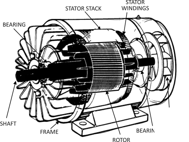 How is torque produced in a 3 phase induction motor quora for Three phase induction motor