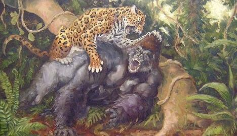 Gorillas Are The Largest Of All Apes And Primates With A Size Around 350 Lb 158 Kg In Contrast 130 58 Leopard
