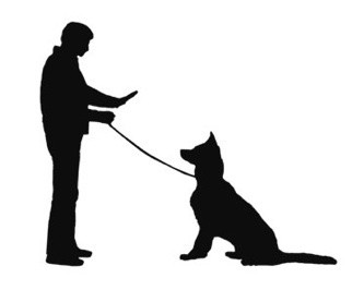 Walk  Dogs With  Hand