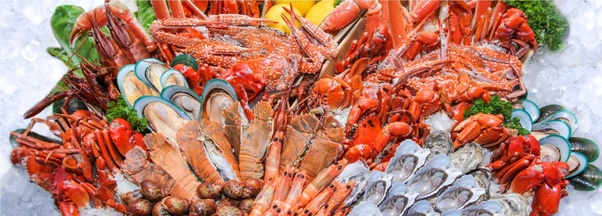 Where can I find the chinese importers for seafood? - Quora