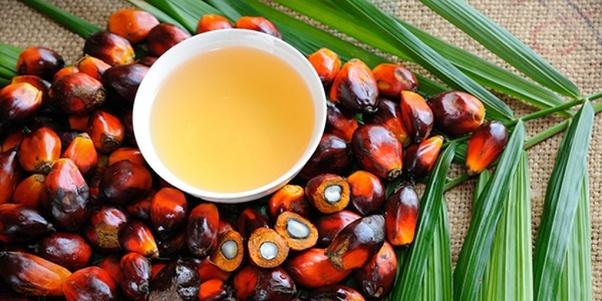 minyak kelapa sawit indonesia