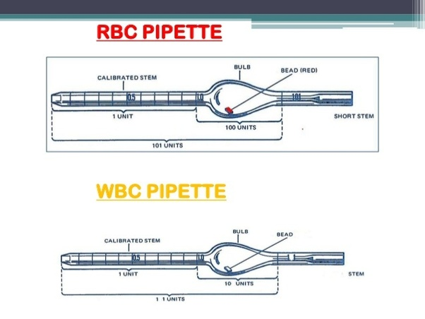What are the other uses    of WBC    pipettes   Quora