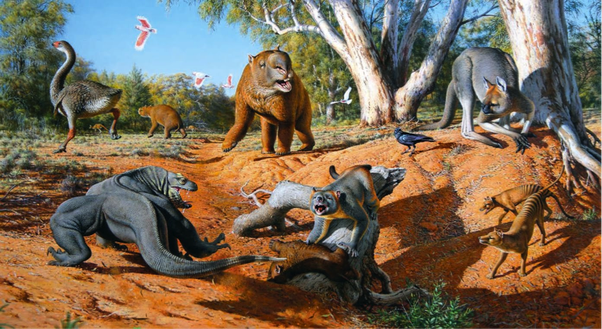 Dinosaurs lived around 100 million years ago humans appeared toward the end of the quaternary mammalian megafauna dominated the continents sciox Image collections