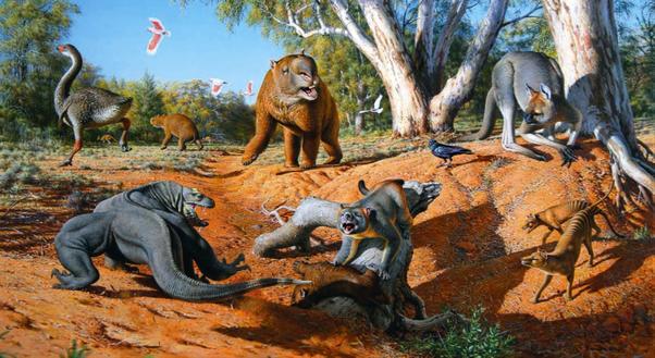 dinosaurs lived around 100 million years ago humans