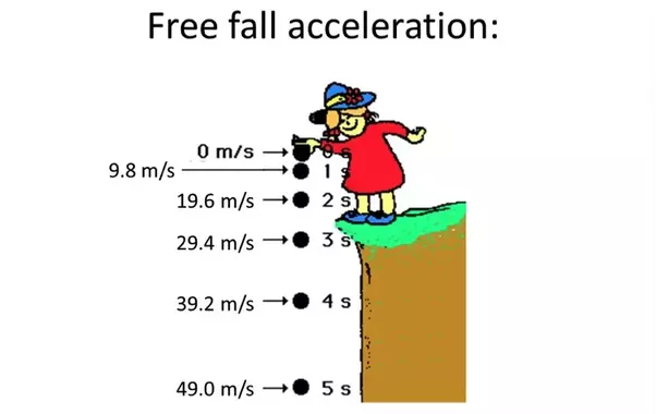 to determine the acceleration of gravity in a free fall experiment essay In this experiment the acceleration of gravity, g  you will be provided with a tape from the free-fall constant acceleration motion such as freefall.