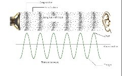 These Are Examples Of Transverse Waves Sound Compress And Refract This Is Seen In The Following Picture Top