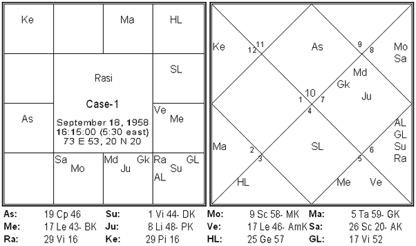 Job In Vedic Astrology