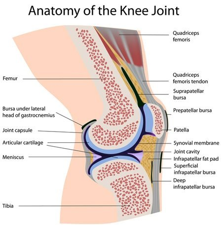 What is patellofemoral syndrome? - Quora