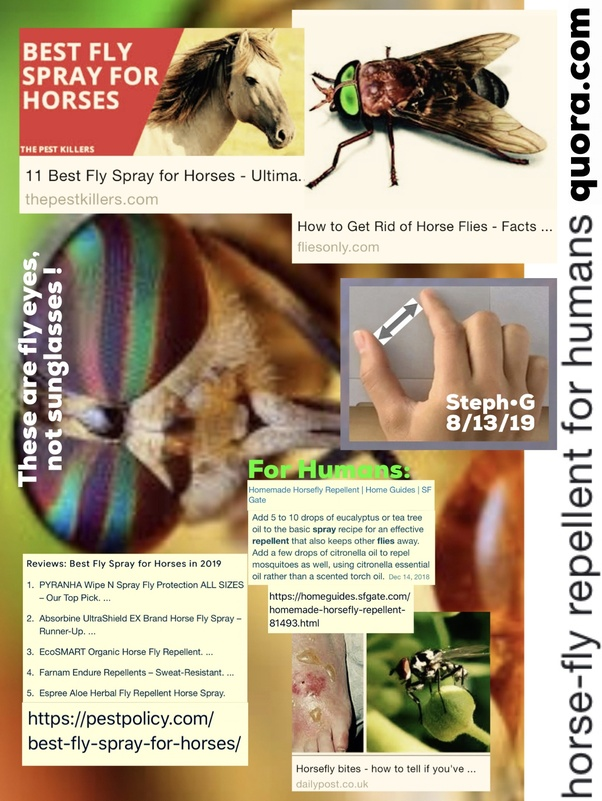 horse-fly repellent for humans