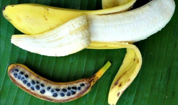 how to buy banana seeds