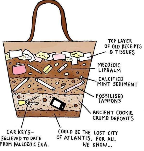 Treasure Chamber As A Thumb Rule Only 20 Of The Total Commodities In Her Bag Makes Day Still Handbag Is An Assortment
