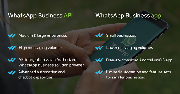 How to use WhatsApp for business - Quora