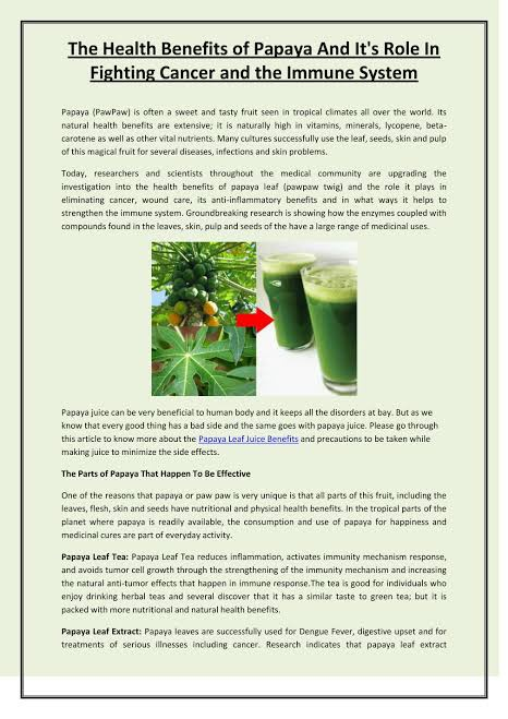 Can I Drink Papaya Leaves Juice For Your Health Quora