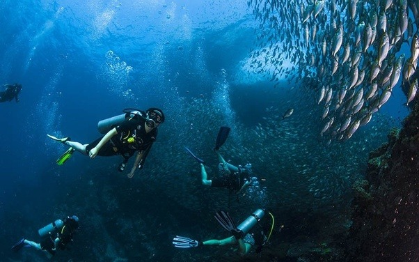 Where Are The Best Scuba Diving Places In Thailand Should I Go To Learn Do If M Already A Professional And Want See
