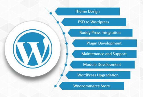 What are the best Wordpress development shops? - Quora