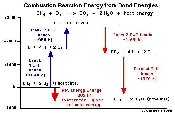 Why is thermal energy released during a combustion ...
