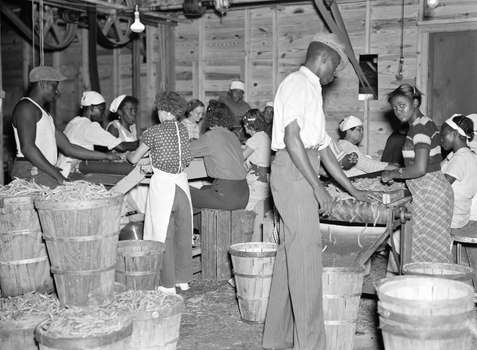 How Were Minorities At A Disadvantage During The Great Depression Quora